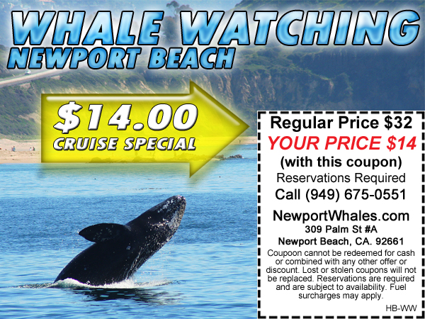 14 Whale Watch Special
